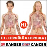 H1 FORMULA
