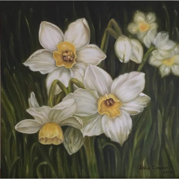 J.C/ Daffodil Time