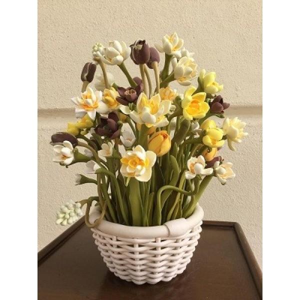 JC Daffodil